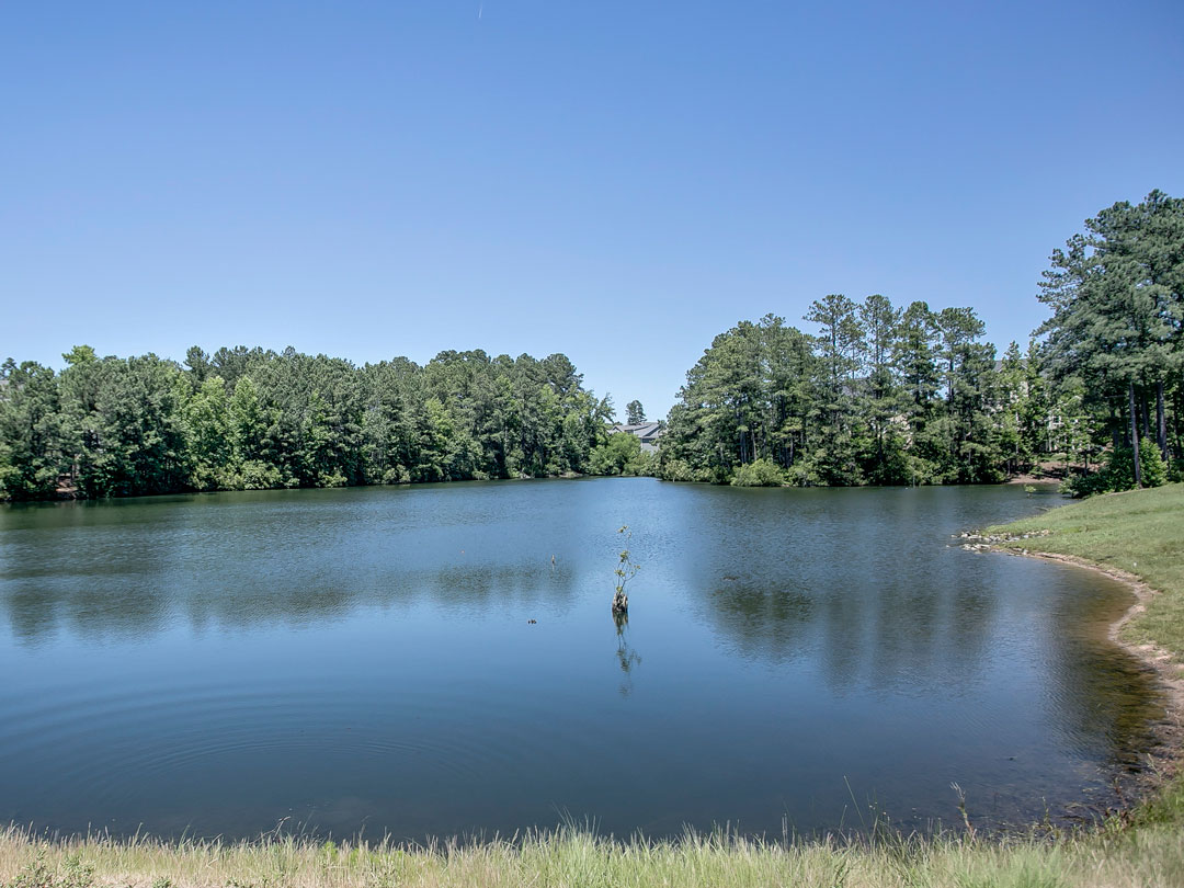 lake in Cameron Pond, custom homes cary nc, single-family custom homes in cary nc, custom home in 27519